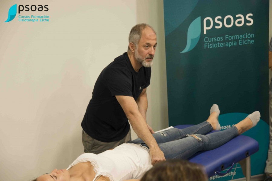 Curso de Integrative Manual Therapy