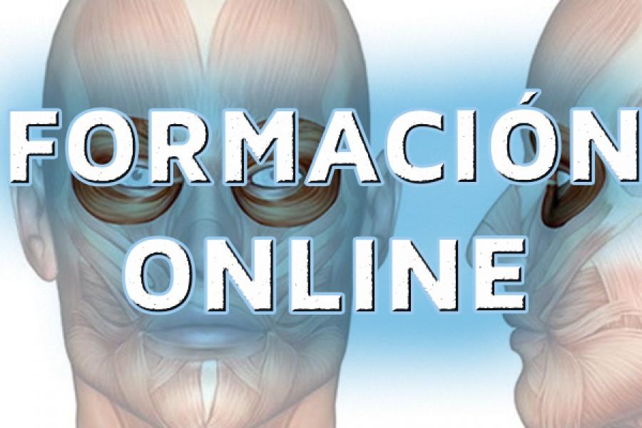 Los mejores cursos de fisioterapia online