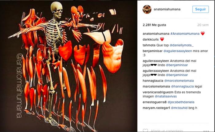 10 cuentas de instagram de Anatomía -