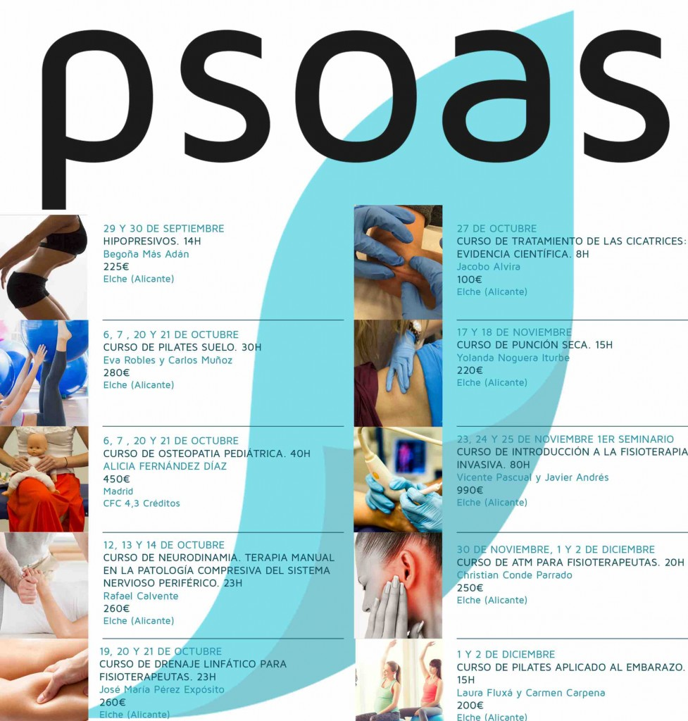 cursos de fisioterapia 2018