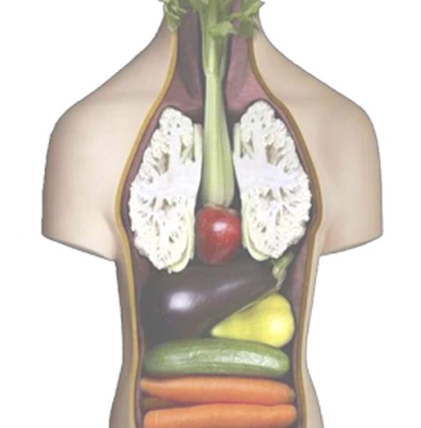 tratamiento-del-dolor-musculo-esqueletico-mediante-claves-nutricionales
